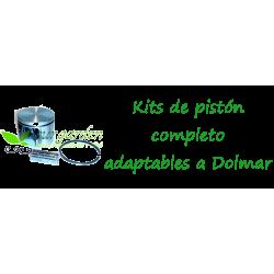 Pistones Dolmar
